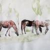 Konji na paši u Urugvaju